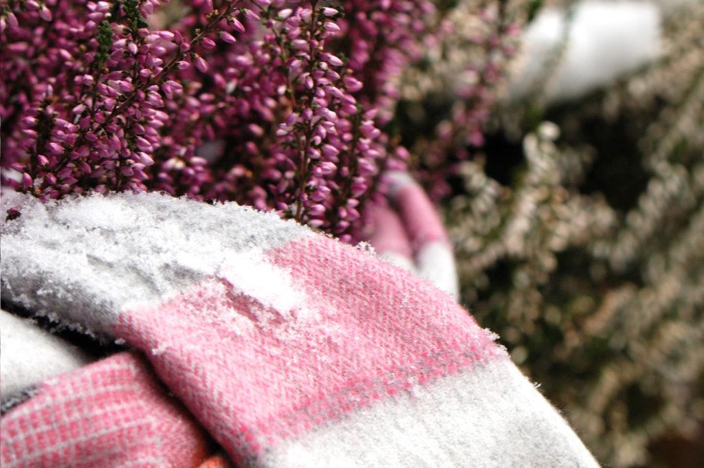 Winterschutz Gartenzubehör